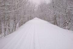 nb-trail