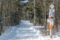 senbsa-trails-0