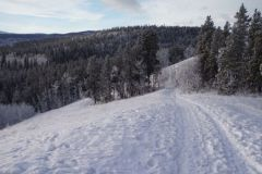 senbsa-trails-1